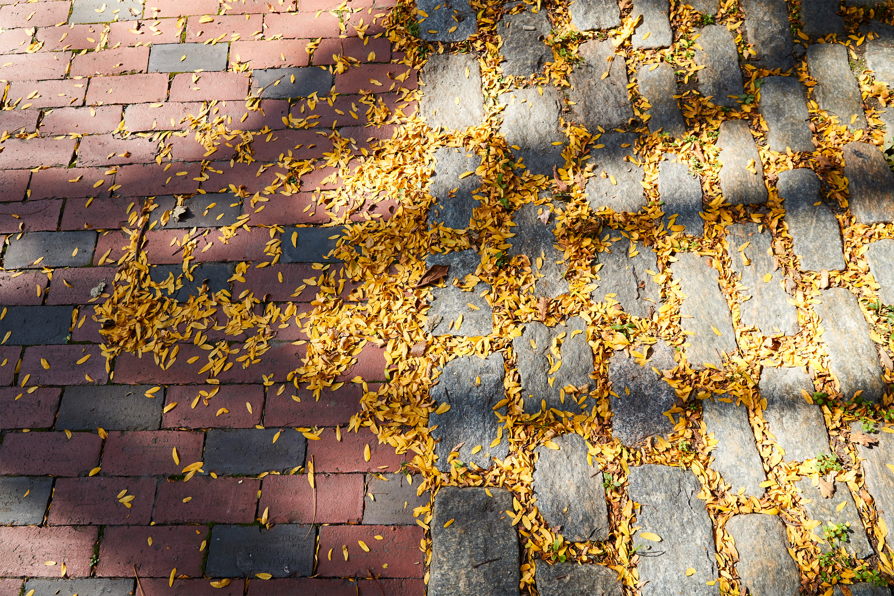 Red brick and grey stones with gold leaves strewn about.