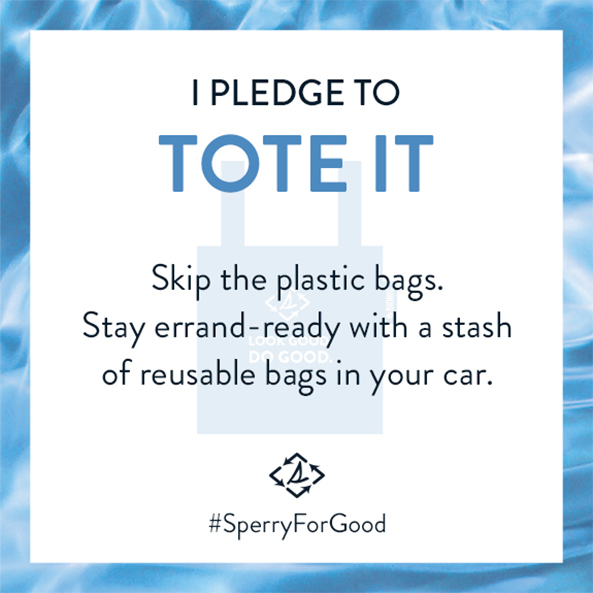 I Pledge to Tote it. Skip the plastic bags. Stay errand-ready with a stash of reusable bags in your car.